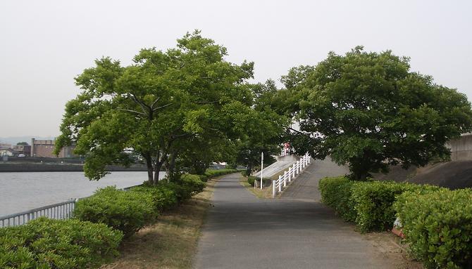 神崎川.jpg
